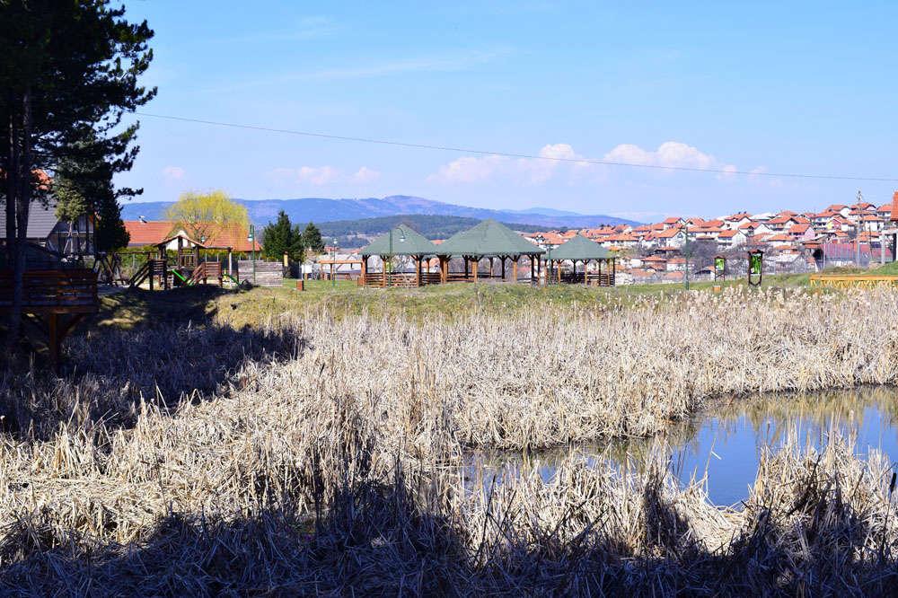 The marsh ecosystem Ezerce